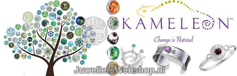 Kameleon-Sieraden-Jewelpops