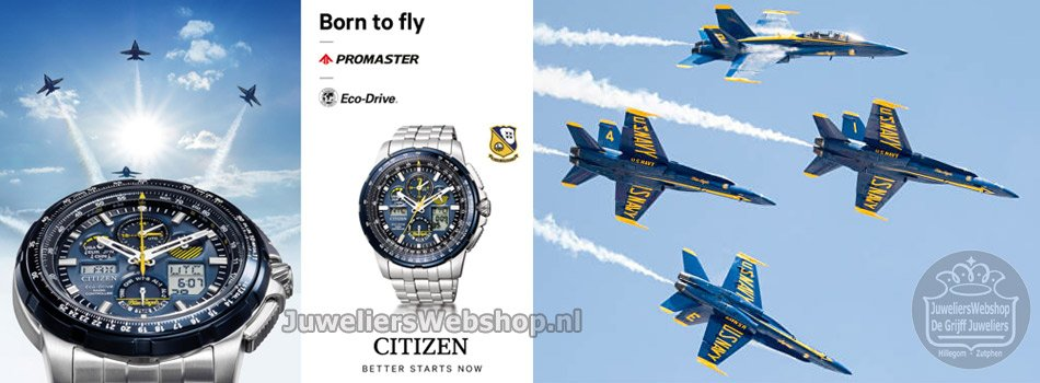 Citizen Blue Angels Promaster