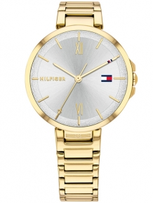 Tommy Hilfiger Horloge TH1782207 Reade Goud